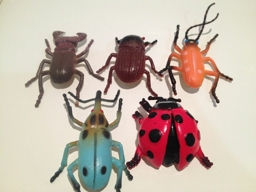Bubba Insects